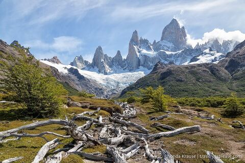 A row of logs leading towards a glacier covered Mount Fitz Roy.