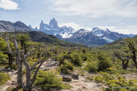 Mt. Fitz Roy in the distance.