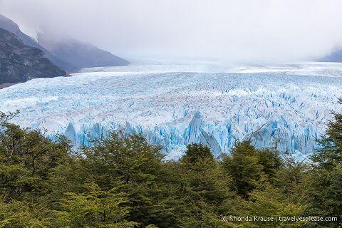 View of Perito Moreno Glacier over the tree tops.