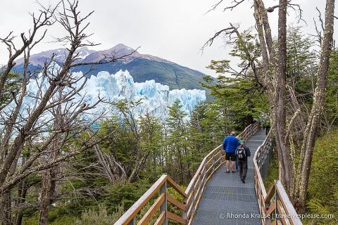 Elevated walkway with views of the glacier through the trees.